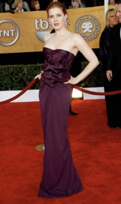 60d3401e4e3a8983_amy2009-screen-actors-guild-awards-best-dressed